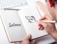 salmon_logo_drawing
