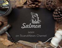 salmon_mock